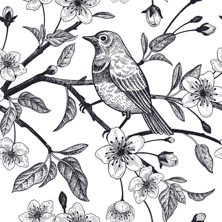 Illustration pour Seamless pattern with Japanese cherry and bird sketch. Vector. Black and white. - image libre de droit