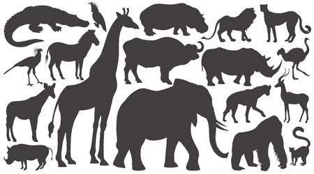 Illustration for Black silhouettes of African animals on white background set. Vector illustration art. Elephant, giraffe, buffalo, hippo, rhino, lion, cheetah, antelope, ostrich, gorilla, crocodile, warthog, zebra... - Royalty Free Image