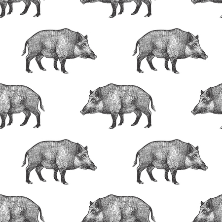 Illustration for Boars. Seamless pattern with forest animals. Hand drawing of wildlife. Vector illustration art. Black and white. Old engraving. Vintage. Design for fabrics, paper, textiles, fashion. - Royalty Free Image