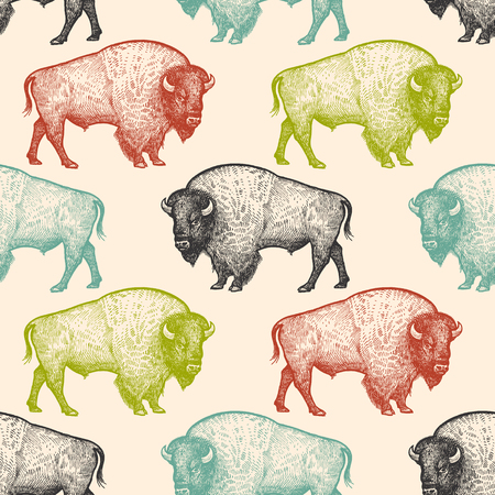 Illustration for Seamless pattern with animals North America Bison. Hand drawing of wildlife. Vector illustration art. Black, white, green, blue and red color. Vintage. Design for fabrics, paper, textiles, fashion. - Royalty Free Image