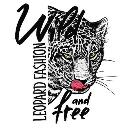 Ilustración de Muzzle of leopard close-up, skull and inscription Wild and free. Template for printing on T-shirts, posters, cards. Black, white and red color. Realistic sketch. Beast style. - Imagen libre de derechos
