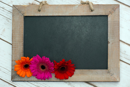 Photo for Wooden panel with Gerberas - Royalty Free Image