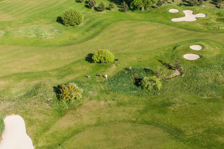 Aerial view over golf field in Poland mural