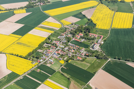 Foto per aerial view of the yellow harvest fields  near Piotrowice Nyskie village in Poland - Immagine Royalty Free