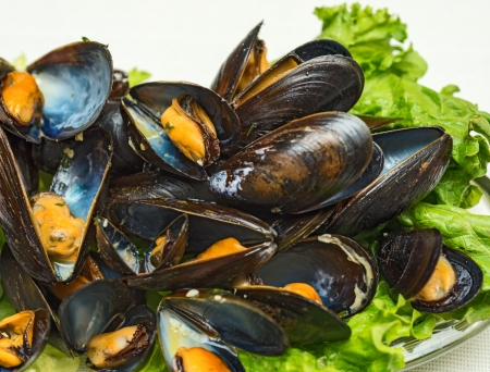 This is a plate of steamed mussels with lettuce leaves on a plate