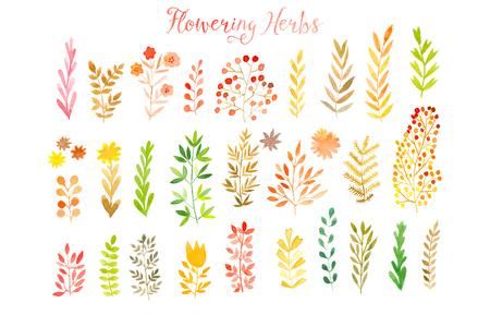 Illustration pour Set of colorful autumn leaves. Vector illustration.vector set of red autumn watercolor leaves and berries, hand drawn design elements. - image libre de droit