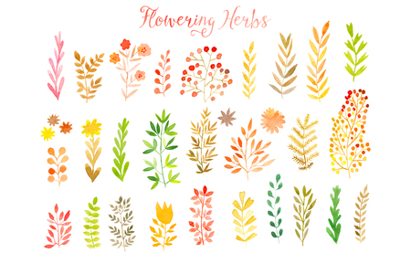 Ilustración de Set of colorful autumn leaves. Vector illustration.vector set of red autumn watercolor leaves and berries, hand drawn design elements. - Imagen libre de derechos