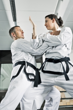 An image of two martial arts fighters