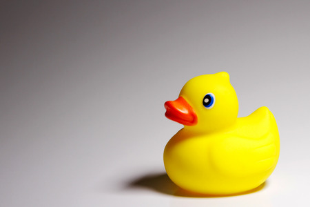 Photo for Rubber Ducky - Royalty Free Image