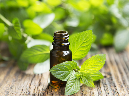 Photo for Natural Mint Essential Oil in a Glass Bottle with Fresh Mint Leaves - Royalty Free Image