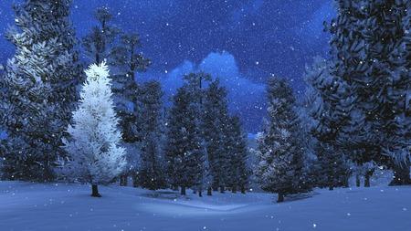 Photo pour Winter night in the snowbound pinewood 3 - image libre de droit