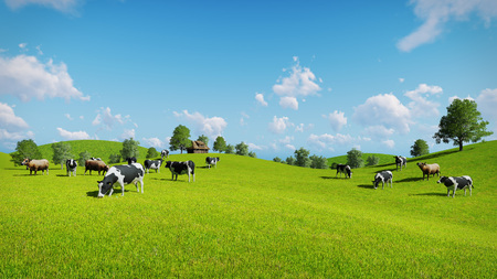 Photo pour Herd of cows graze on the open green meadows at spring day. Realistic 3D illustration was done from my own 3D rendering file. - image libre de droit