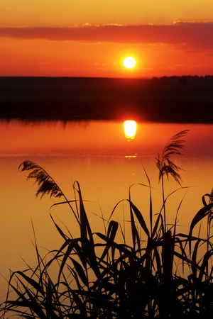 Photo pour summer sunset - image libre de droit
