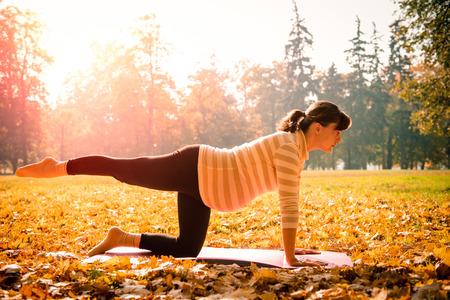 Foto de Fitness pregnant woman exercising outdoor in autumn nature - Imagen libre de derechos