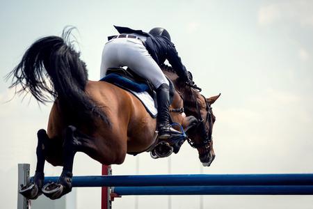 Photo pour Equestrian Sports, Horsejumping Events - image libre de droit