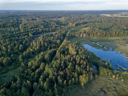 Photo for drone image. country lake surrounded by pine forest and fields from above. summer day in swamp area in Latvia - Royalty Free Image