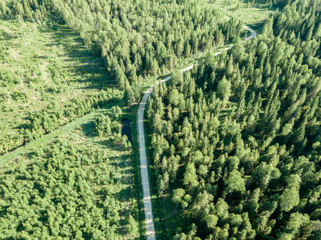 Photo for drone image. gravel road surrounded by pine forest from above. summer countryside in Latvia - Royalty Free Image