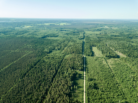 Foto de drone image. gravel road surrounded by pine forest from above. summer countryside in Latvia - Imagen libre de derechos