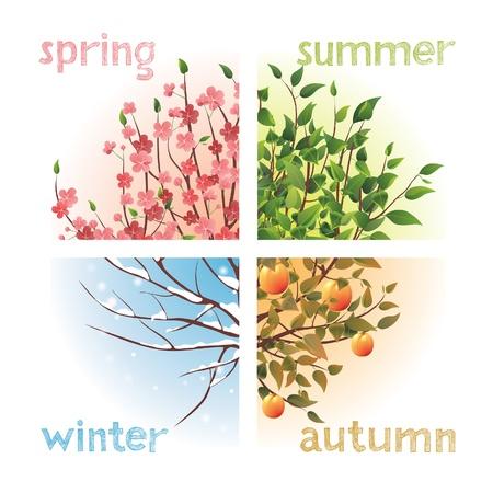 4 seasons in 1 tree