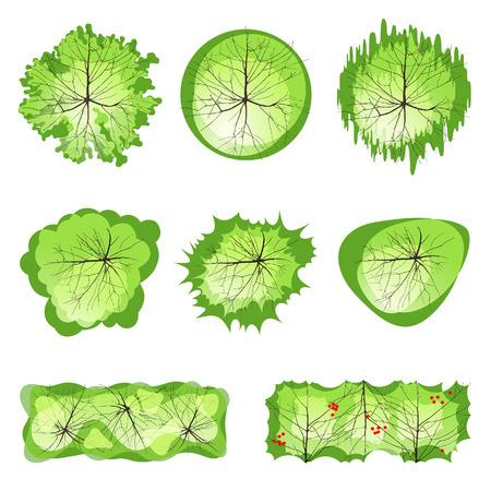 Ilustración de Trees - top view. Easy to use in your landscape design projects!  - Imagen libre de derechos