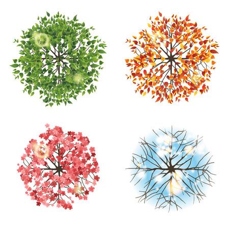 Ilustración de Tree icon in 4 different seasons - top view. Easy to use in your landscape design projects!  - Imagen libre de derechos
