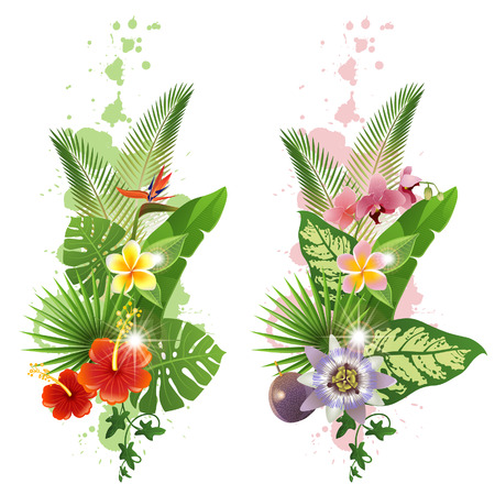 Illustration pour Bright tropical leafs and flowers  - image libre de droit