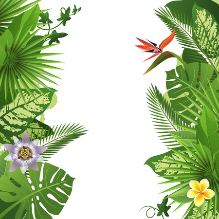 Illustration pour Tropical background with flowers and plants - image libre de droit
