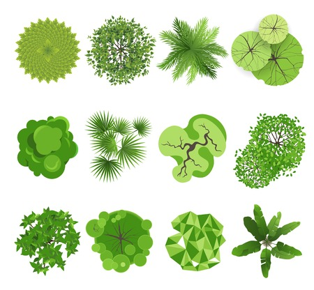 Illustration pour Trees - top view  Easy to use in your landscape design projects  - image libre de droit