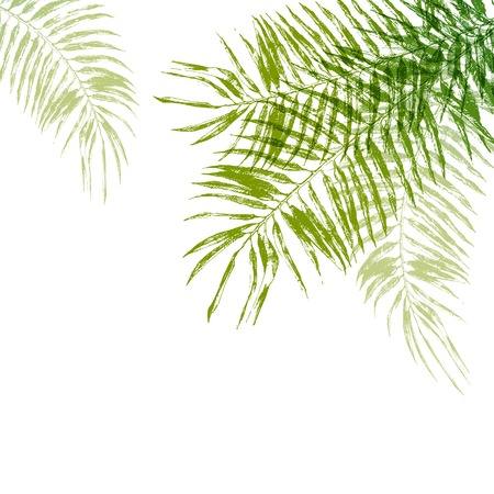 Illustration pour Hand drawn palm tree leaves background - image libre de droit