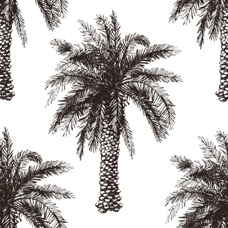 Illustration pour Hand drawn palm tree seamless in retro style - image libre de droit