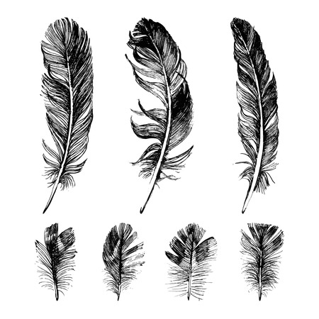 Ilustración de Hand drawn feathers set on white background - Imagen libre de derechos