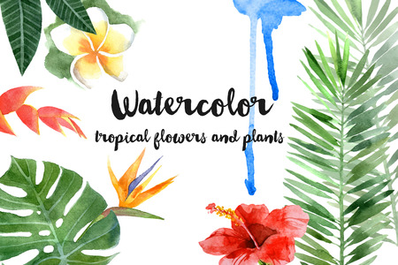 Illustration pour hand drawn watercolor tropical plants - image libre de droit