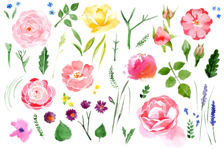 Illustration for Beautiful watercolor flower set over white background - Royalty Free Image