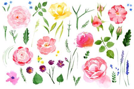 Ilustración de Beautiful watercolor flower set over white background - Imagen libre de derechos