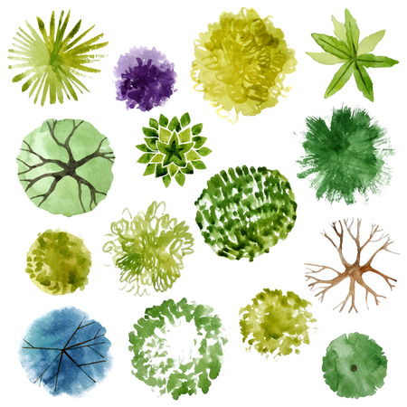 Illustration pour Watercolor trees - top view. Easy to use in your landscape design projects - image libre de droit
