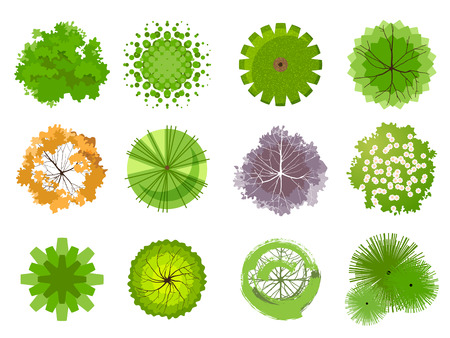 Illustration pour Trees - top view. Easy to use in your landscape design projects - image libre de droit