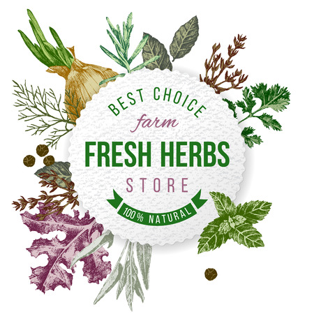 Illustration for Round emblem with type design and hand drawn herbs and spices on white background - Royalty Free Image