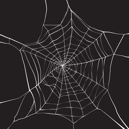 Ilustración de White spider web on dark background - Imagen libre de derechos