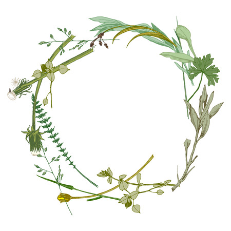 Illustration pour wreath made with hand drawn wild herbs - image libre de droit