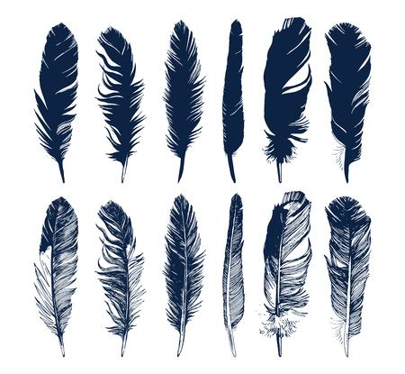 Ilustración de Hand drawn feathers and their silhouettes set on white background - Imagen libre de derechos