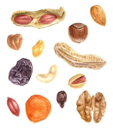Illustration for Nuts and dried fruits watercolor set - Royalty Free Image