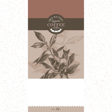 Illustration for Banner with type design and hand drawn coffee tree branch. Vector illustration - Royalty Free Image