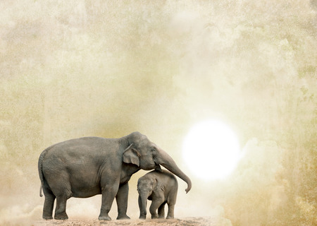 Photo pour elephants on a grunge background - image libre de droit