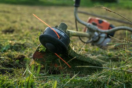 Photo pour Trimmer after work lies on the grass. - image libre de droit