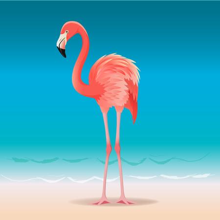 Ilustración de Exotic pink flamingo walking on the hot summer beach. Pink flamingo vector illustration - Imagen libre de derechos