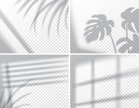 Ilustración de Set of shadows, overlay effects mock up, window frame and leaf of plants, natural interior light, vector illustration - Imagen libre de derechos