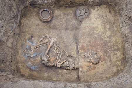 Photo for Archaeological excavations. research on human burial, skeleton, skull, ritual pot - Royalty Free Image