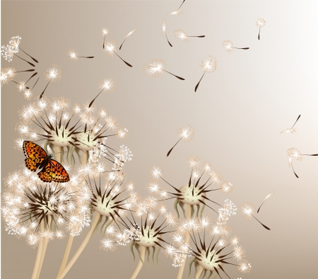 Foto de Cute vector background with white vector dandelions for design - Imagen libre de derechos