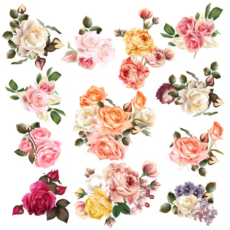 Foto de Mega collection of vector  high detailed realistic rose flowers on white for design - Imagen libre de derechos