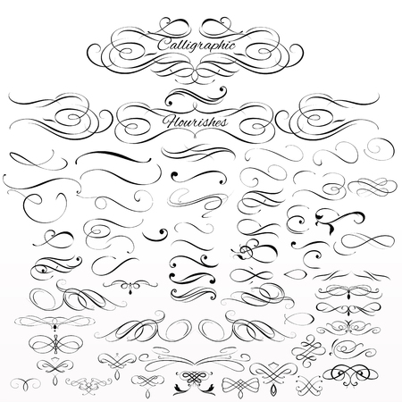 Illustration pour Collection or set of vintage styled calligraphic elements or flourishes - image libre de droit